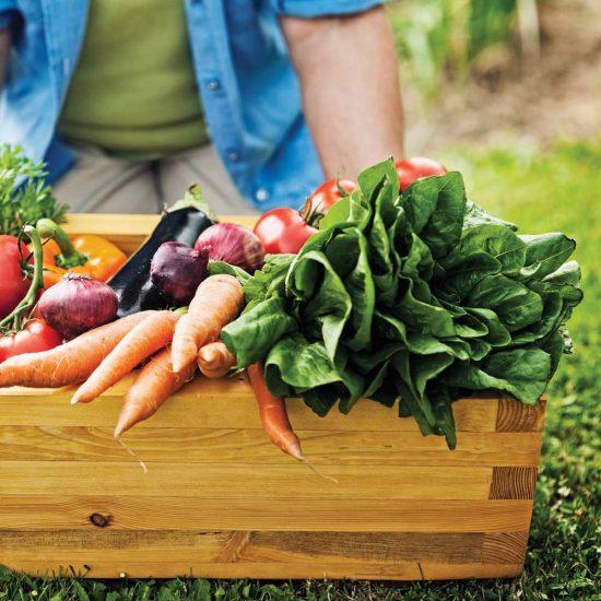 Pesticides: les aliments les plus contaminés