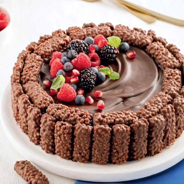 Gâteau au chocolat et aux biscuits