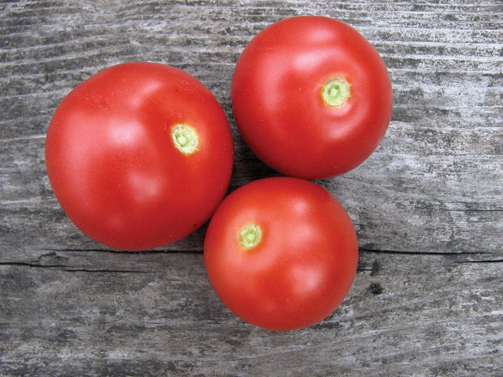 Quoi faire avec vos tomates?
