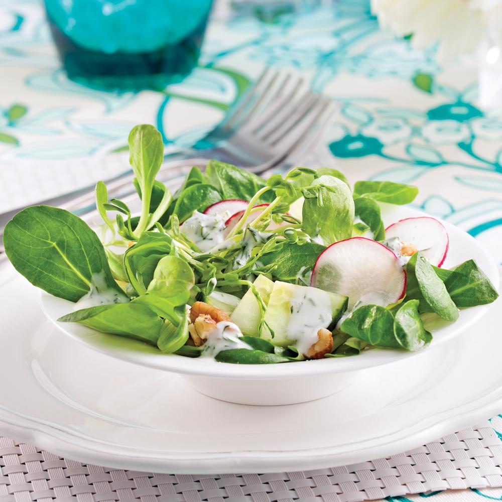 Salade crémeuse de concombre et noix de Grenoble