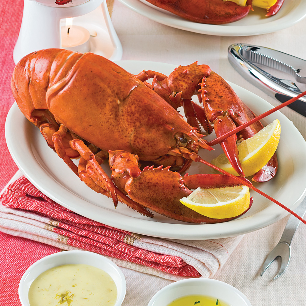Comment cuire le homard