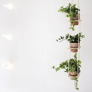 DIY: support à plantes original
