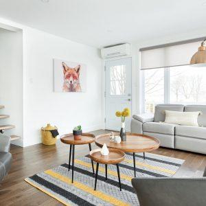 Salon minimaliste ensoleillé