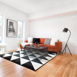 Le style minimaliste funky au salon