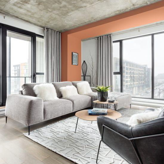 Salon chaleureux couleur terre de Sienne