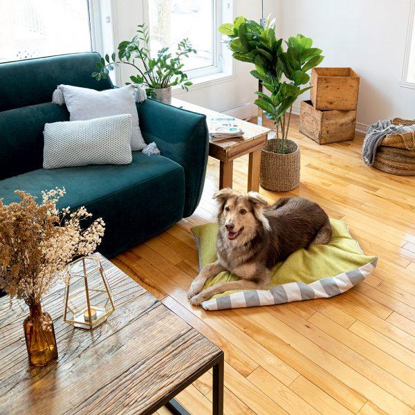 Recouvrir un coussin pour chien sans couture