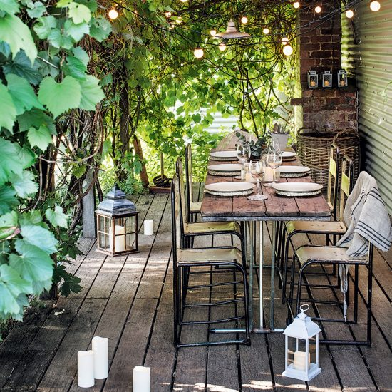 Vignes champêtres pour le patio