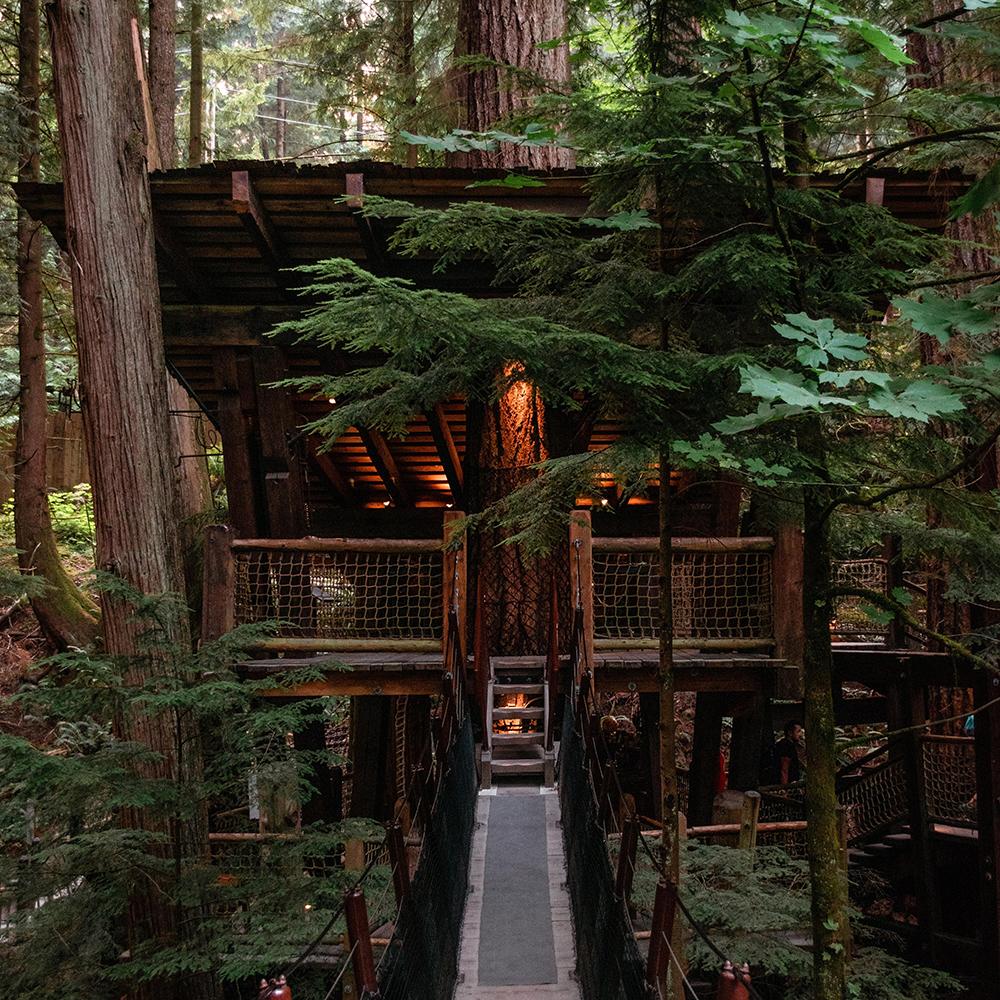 10 maisons dans les arbres à faire rêver