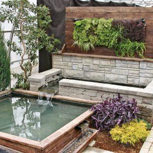 Mur végétal et jardin d'eau