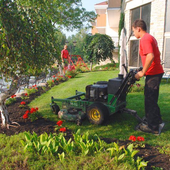 Quoi faire au printemps sur votre terrain?