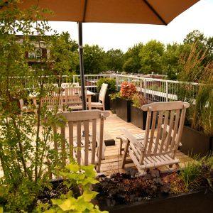 Bordure de végétaux sur la terrasse