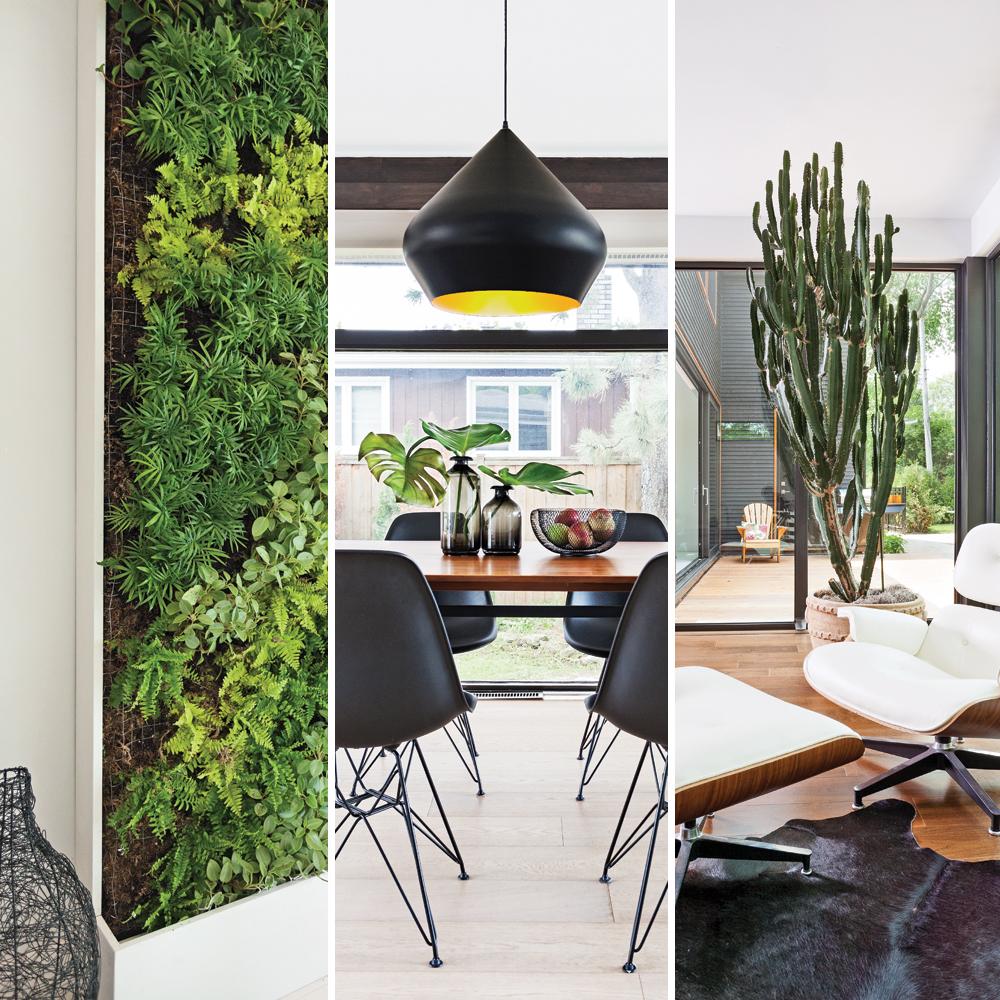 7 idées tendance pour intégrer les plantes à notre décor