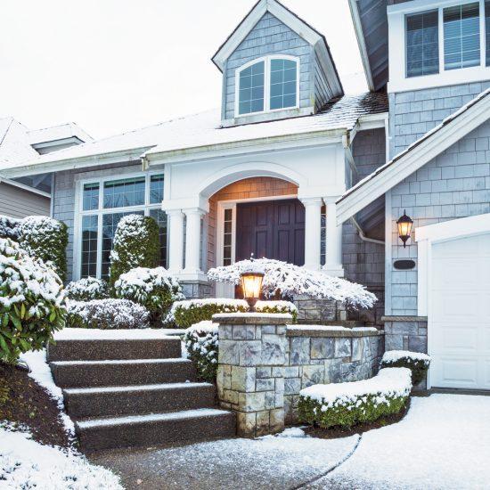 Protégez les arbres et arbustes du gel et de la neige