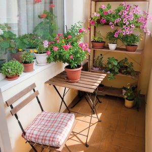 Le balcon fleuri par excellence