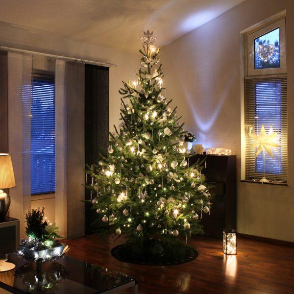 Comment entretenir un sapin de Noël naturel en 5 trucs de pro
