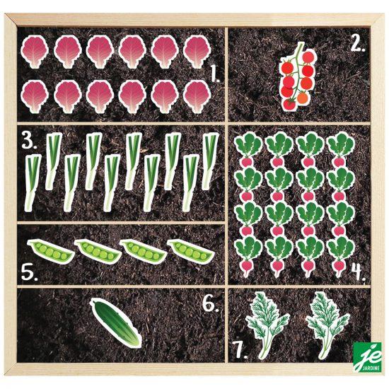 Plan de potager pour préparer de bonnes salades santé