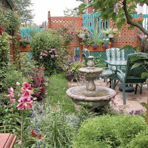 Petit jardin fleuri au maximum