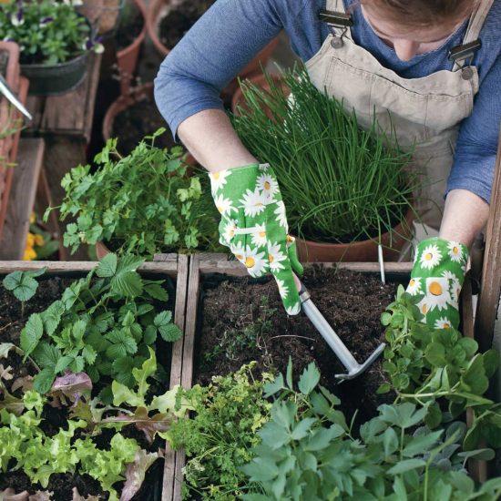 Bien vivre au jardin: 5 idées pour un jardin sur le balcon