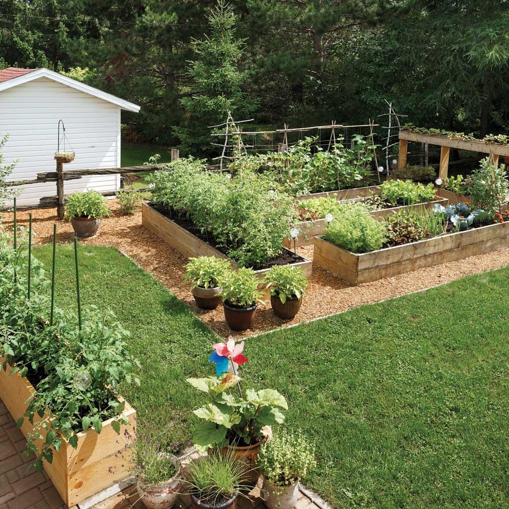 Histoire de jardinier : Le jardin autonome d'Isabelle