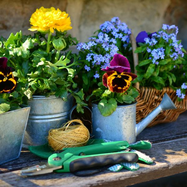Grand ménage du printemps: notre guide pour l'extérieur