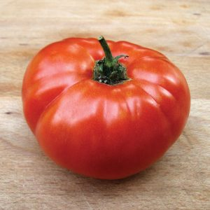 Tomate 'Moskvich'