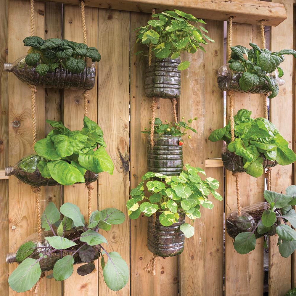Jardin vertical récup'