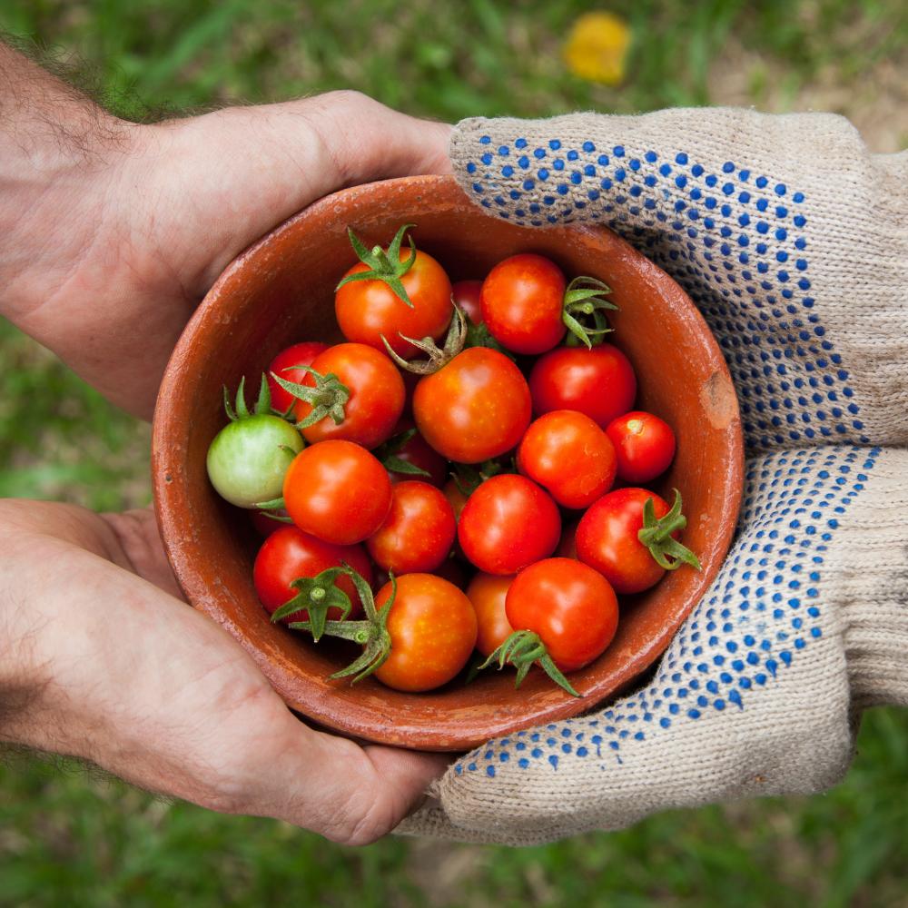 Une carrière en horticulture taillée sur mesure!