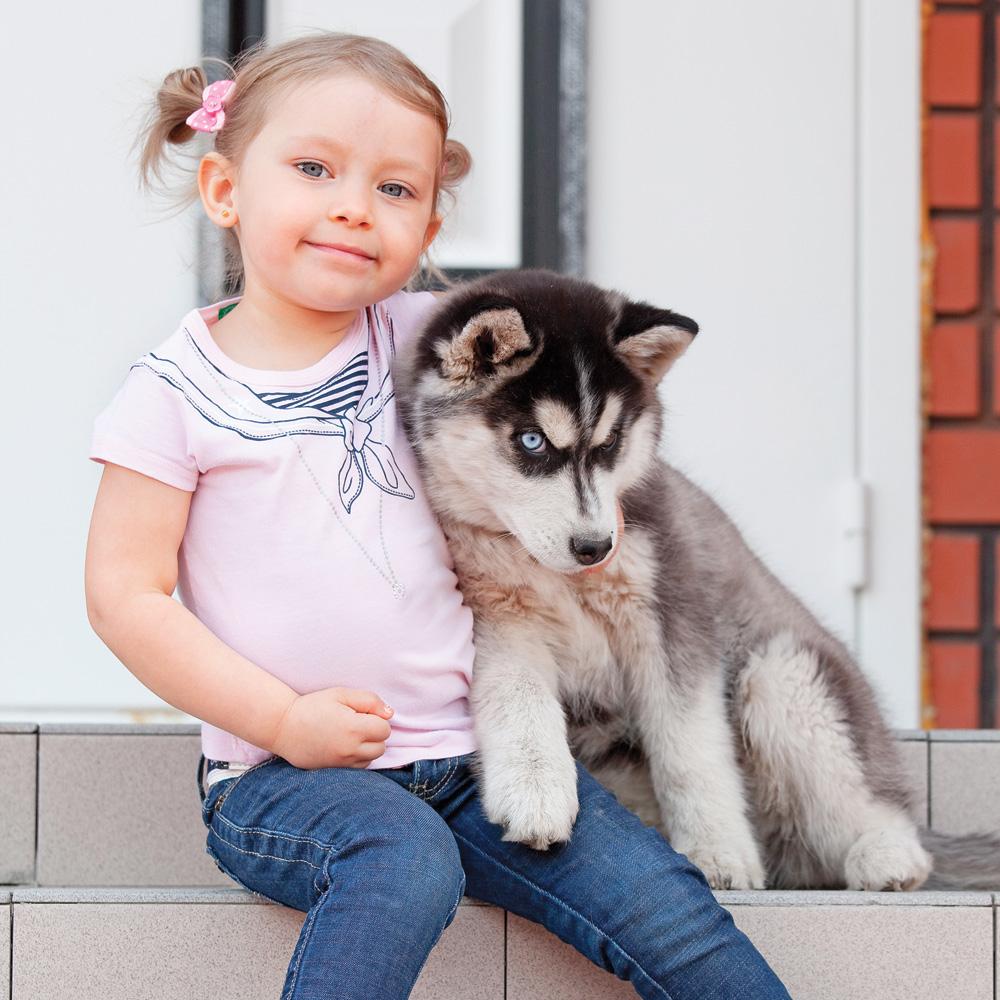 Adopter un animal de compagnie