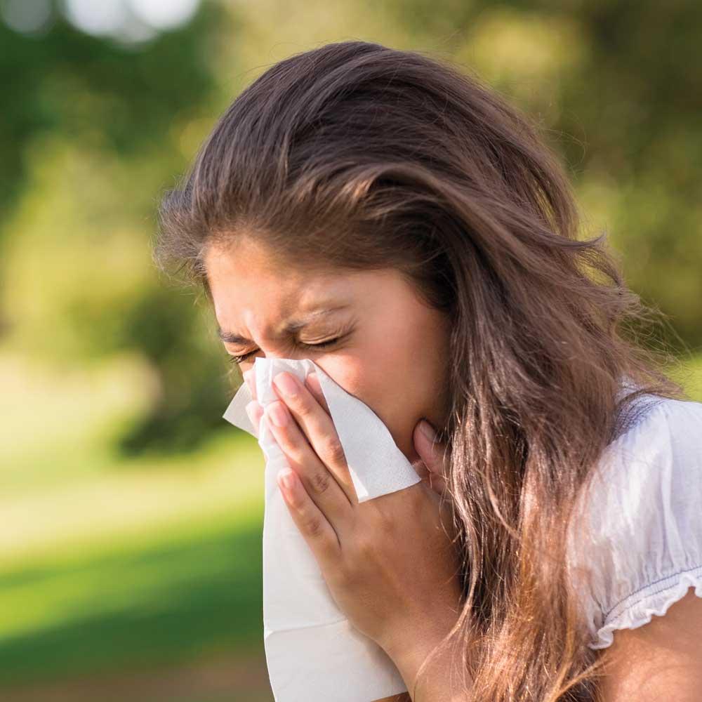 Mythe ou réalité? Il y a plus d'allergies saisonnières qu'autrefois
