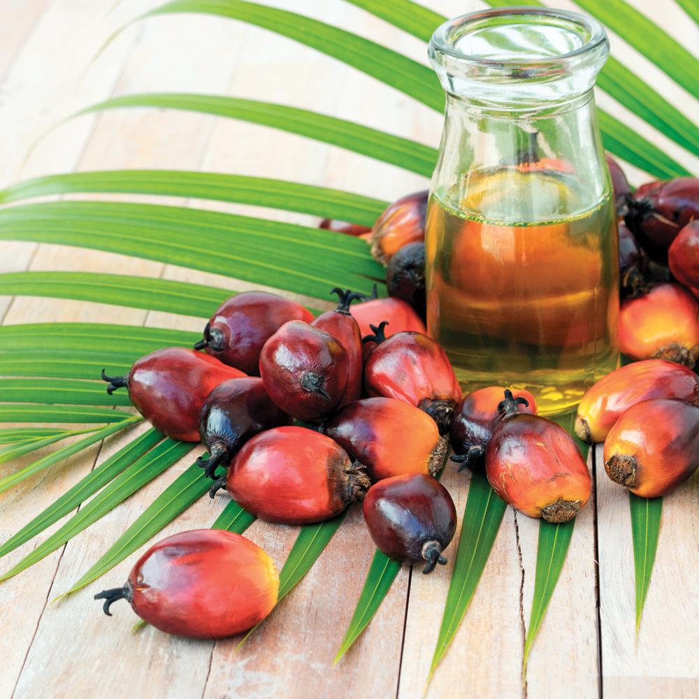 L'huile de palme: néfaste pour la santé?